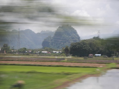 Rice paddies helped to make this some of the most stunning scenery in Indonesia - although I had to be mindful of poisoned arrows