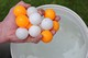 Set of Pictures for sale - world record for most table tennis balls held underwater - pic 3